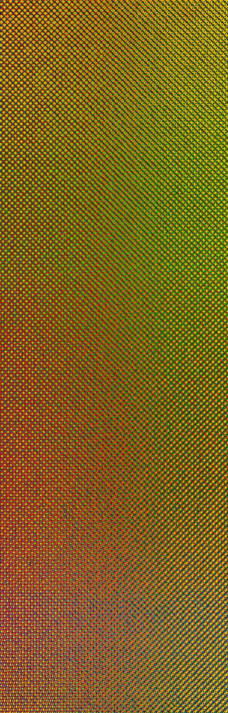 Was siehst Du? 2020 - www.scharein.de